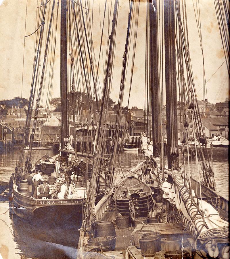 Schooner Athena built 1908