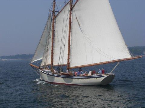 Beautiful Sunny Sail