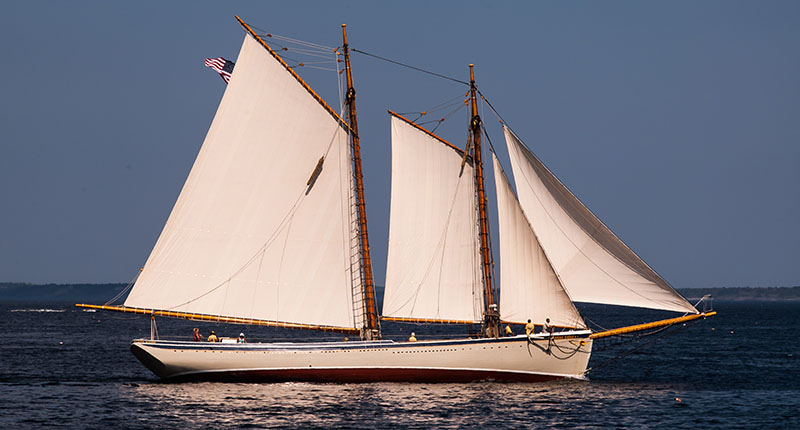 American Eagle sailing during the Great Schooner Race July 5, 2013