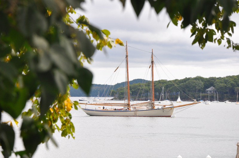 Moored in Castine