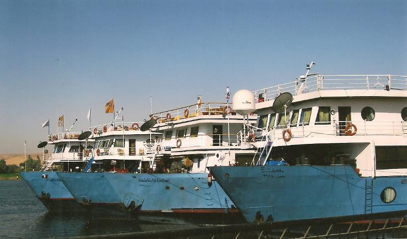 Cruise ship gam in Egypt