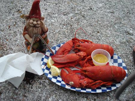 Gnomie having lobster by Kyle Niewald