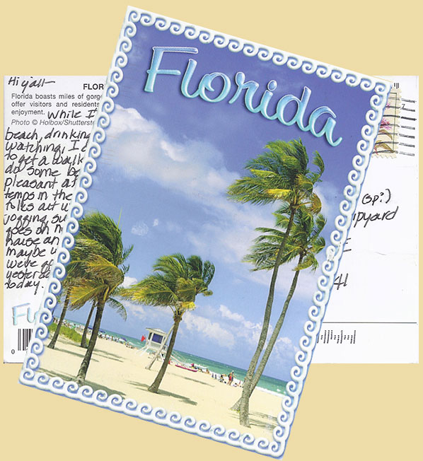 Florida Palms Postcard to the Schooner American Eagle