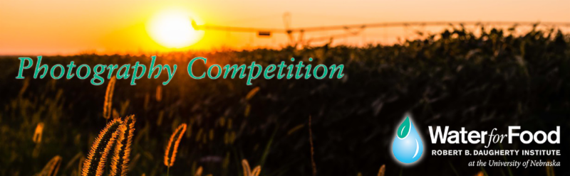 Photo contest banner