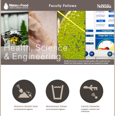 Water for Food Faculty Fellows in Health, Science & Engineering