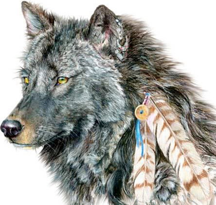 Medicine Wolf