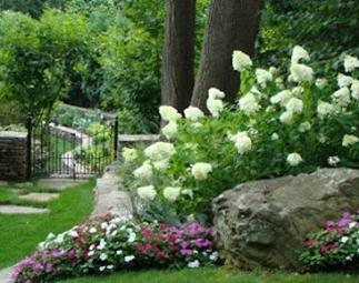 Pinehurst floral greenhouse for Partial shade garden designs