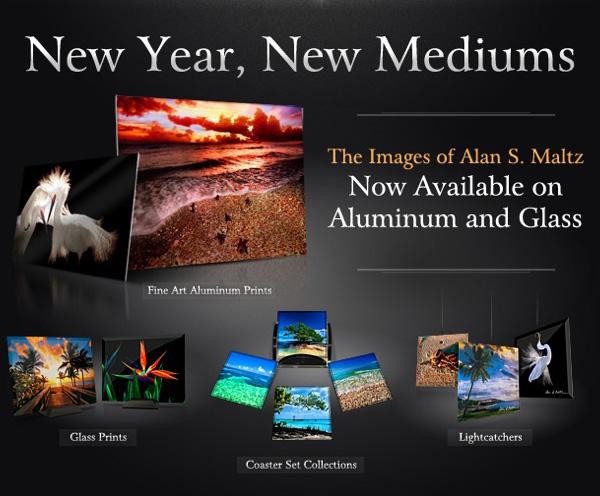New Year, New Mediums