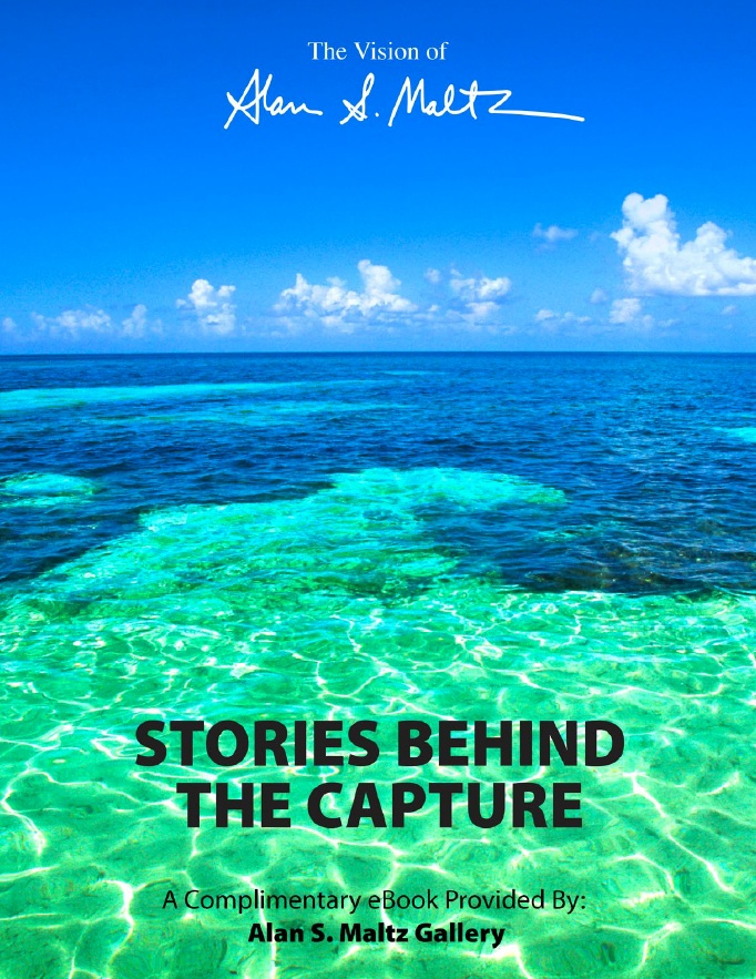 Stories Behind the Capture -