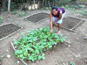 Mayra Gardening