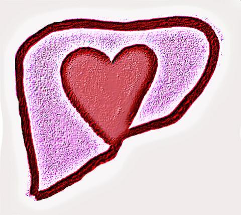 liver love bongiorno