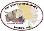 Tri State Weimaraner Rescue Inc.