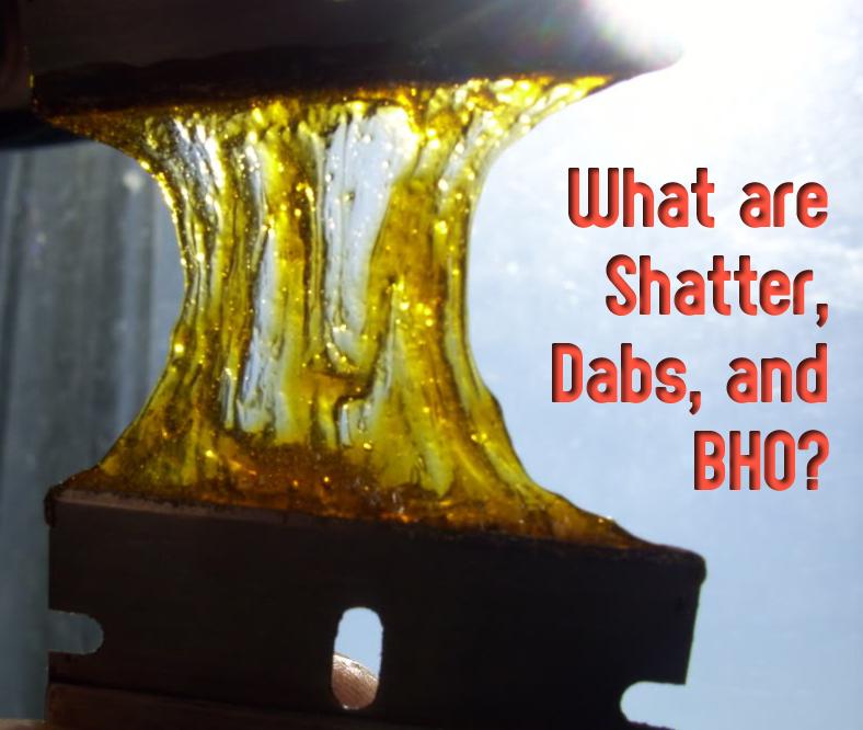 Butane Hash Oil Header      Dabs Oil