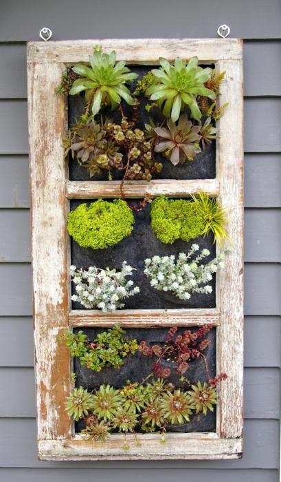 window pane gardening