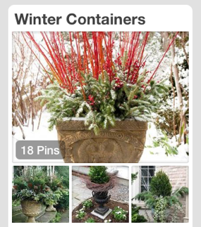 Winter Container Pinterest Board