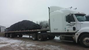 tree load