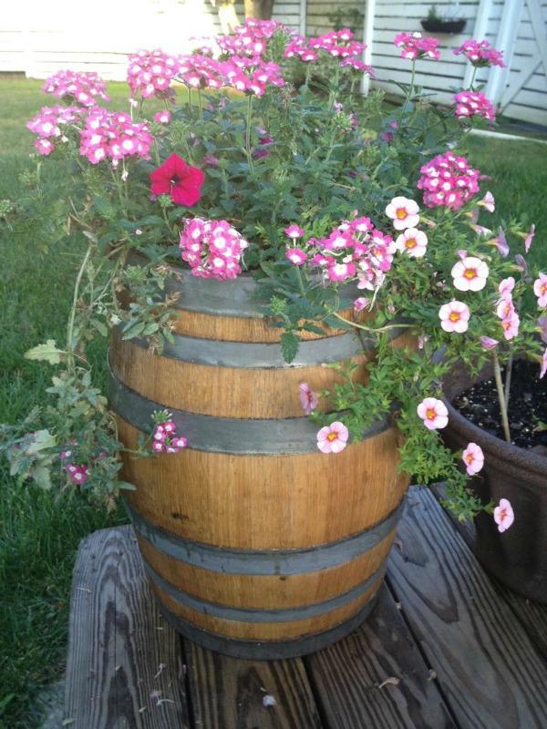 flowers in 10 gallon barrel
