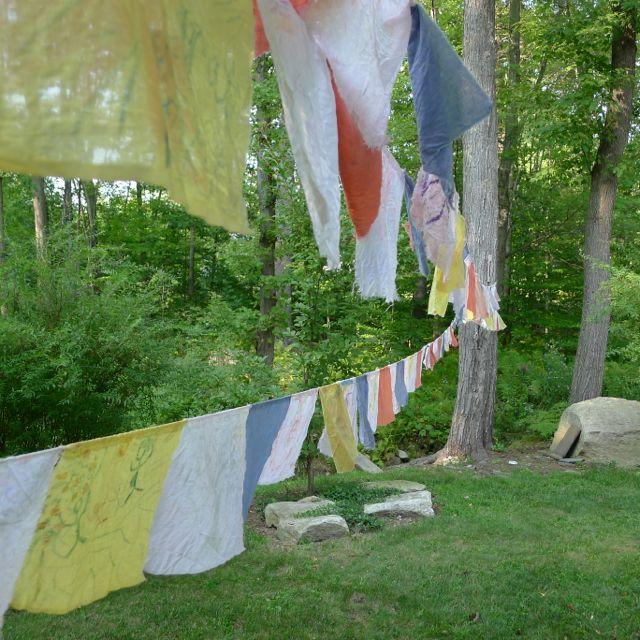 flags in the garden