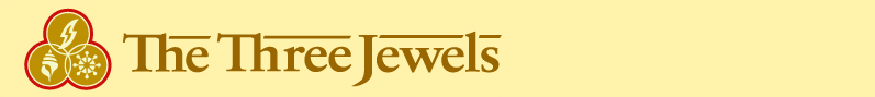 3J banner header