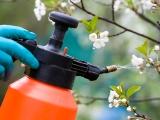 pesticide being sprayed