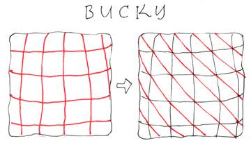 bucky1