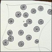 sez-4