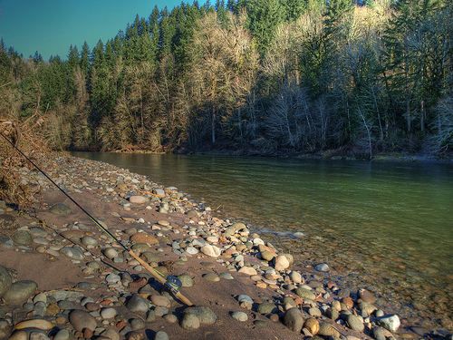 Native fish society calls for end of sandy river hatchery for Sandy river fishing