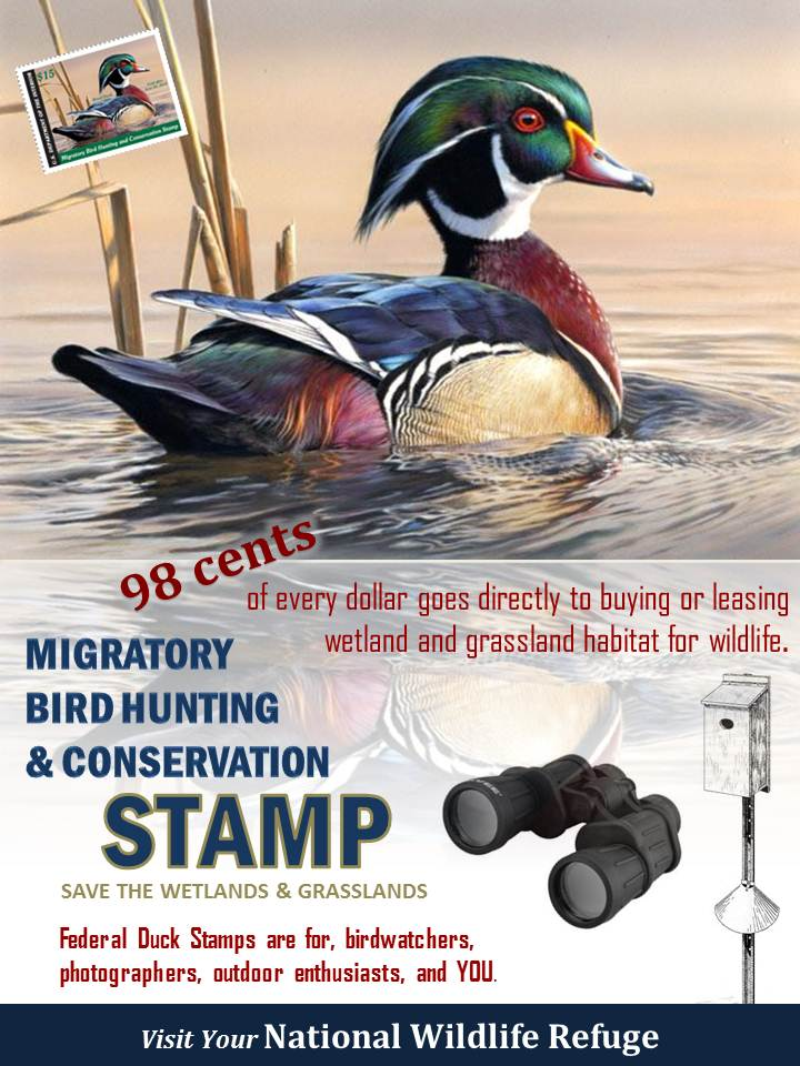 Duck Stamp poster 2012