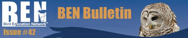 BEN Bulletin Email #42