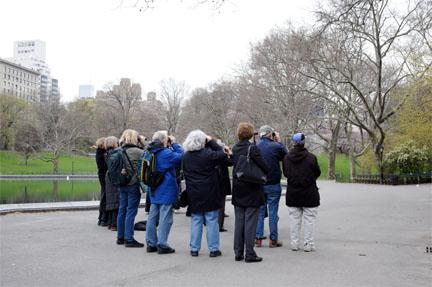 Birders in Central Park