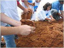 Coco Coir in Use
