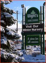 consumer-winter