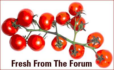fresh from forum 1