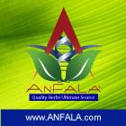 Anfala June 1 2011