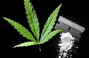 marijuana or cocaine