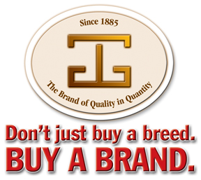 Oval Brand