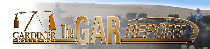 GAR Report