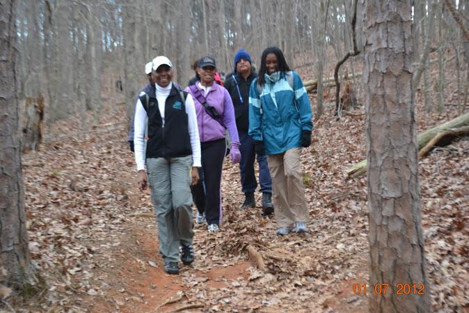 Chicopee Woods Hike Trail