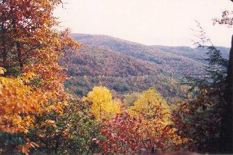 Blood Mountain Autumn Colors
