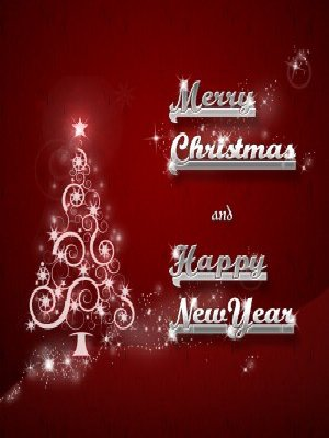 Merry Christmas - Happy New Year Card