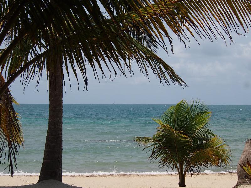 Robert's Grove _Beachfront