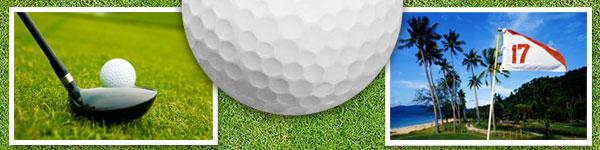 golf2b.jpg