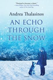 echo through the snow cover image