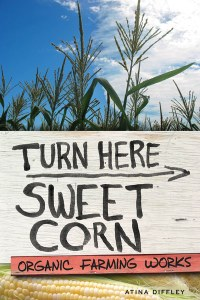 turn here sweet corn cover image