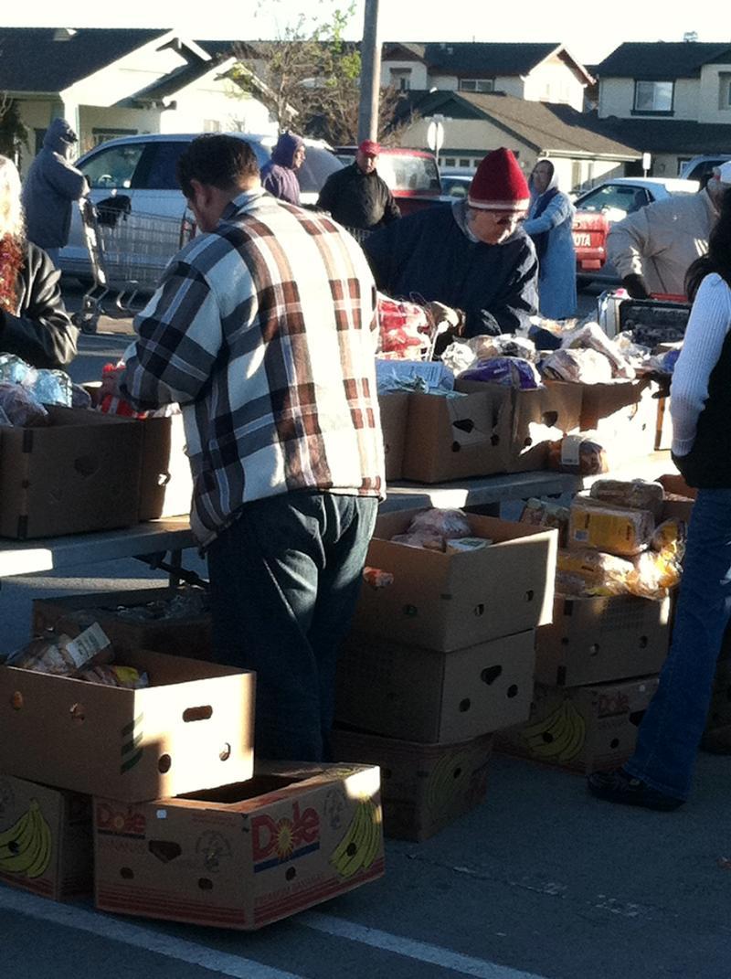 Distribution Volunteer