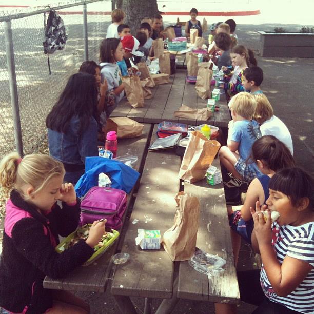 Summer Feeding 2013