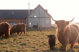 Home swap in Scotland