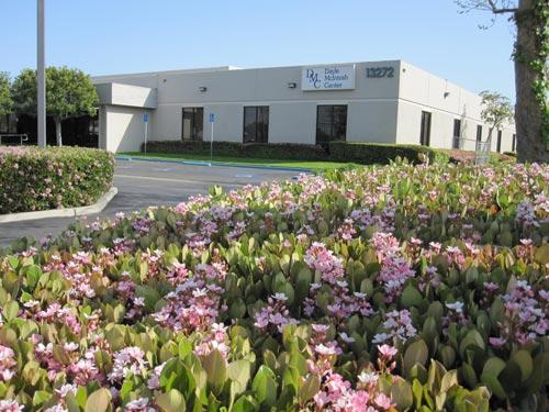 Photo of Dayle McIntosh Center