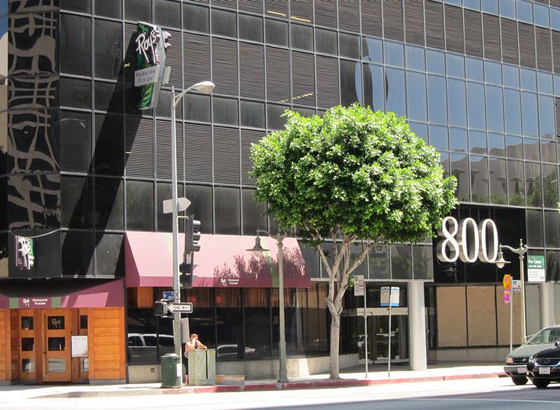 Photo of 800 S. Figueroa Street