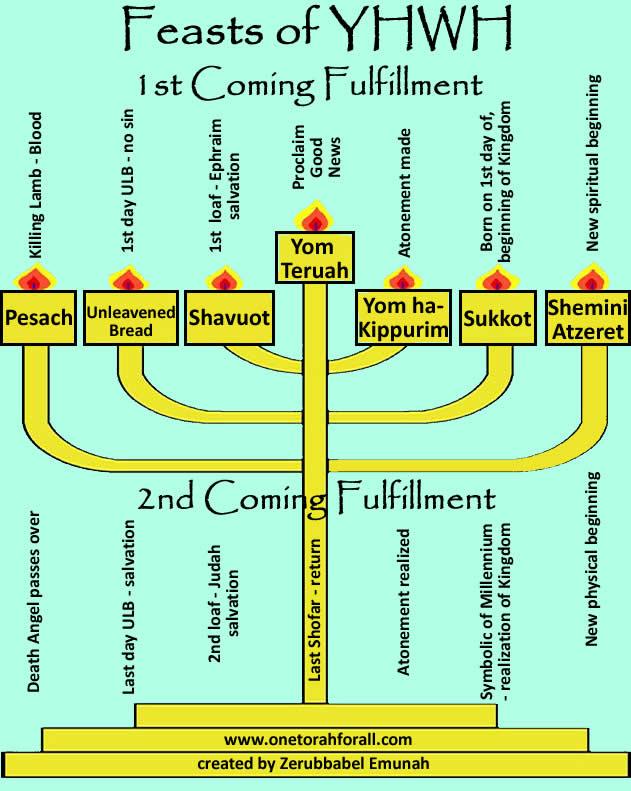 Feast Menorah